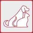 Assicurazione animali domestici